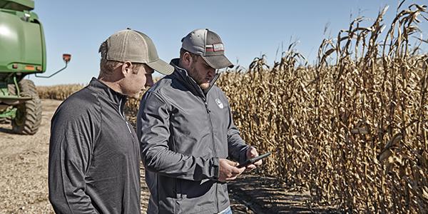 Two men in corn field looking at iPad