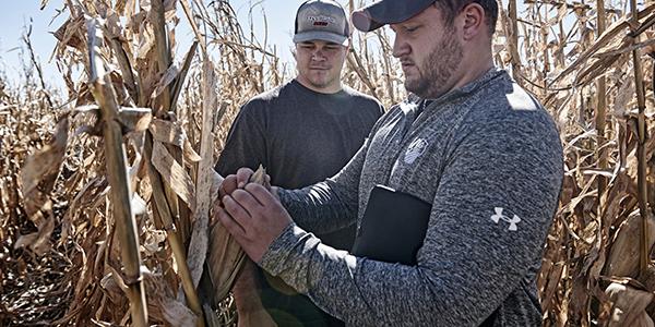 harvest digital ag